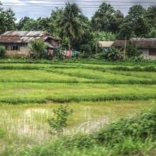 Wassernetzwerk BW: Anschubmittel für die Initiierung von Verbundprojekten